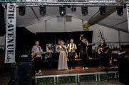 Schuetzenfest_2017_Tag1_30